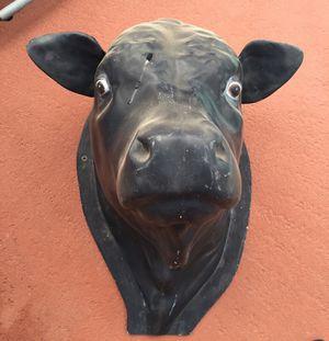 Black Cow,s Head for Sale in Lakeland, FL