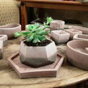 Succulent Flower Pots for Sale in Boerne, TX