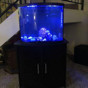 25 Gallon In Perfect Condition Curved Fish Tank for Sale in Boynton Beach, FL