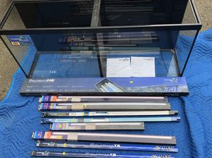 Deep blue double fish tank for Sale in Saugus, MA