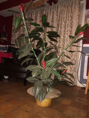 Fake plant for Sale in Woodlawn, MD