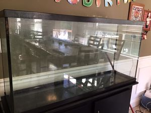 60 gallon Aquarium with stand for Sale in Columbia, MO