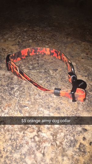Used, Dog collar for Sale for sale  Austin, TX