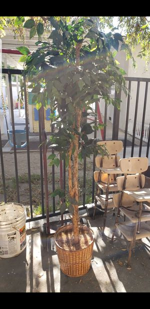 House fake plant for Sale in Pico Rivera, CA
