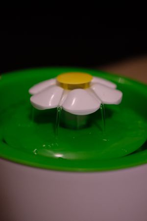 Catit flower water fountain for Sale in Los Angeles, CA