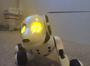 Zoomer Interactive Dog from Spin Master for Sale in Arlington, WA