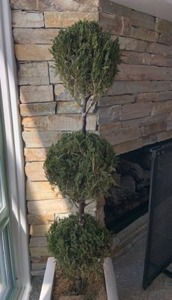 3 tier dry topiary for Sale in San Diego,  CA
