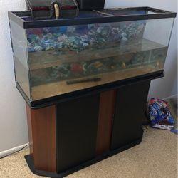 55 Gallon Fish Tank for Sale in Tampa,  FL