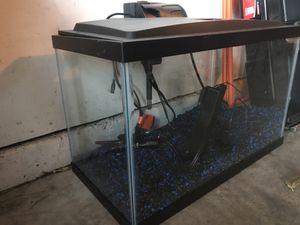 10 gallon fish tank with decor for Sale in Denver, CO