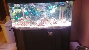 60 gallon saltwater acrylic aquarium for Sale in Rochester Hills, MI