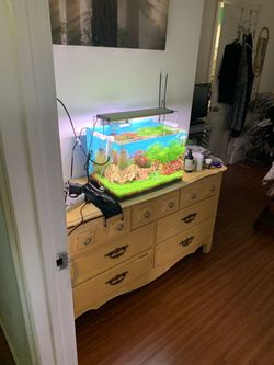 Planted Fish Tank for Sale in Los Angeles,  CA