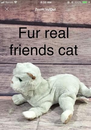 Furreal Friends Cat for Sale in Camp Hill, PA