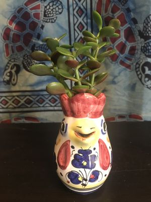 Rooster planter with live succulent - weeping jade for Sale in Strongsville, OH