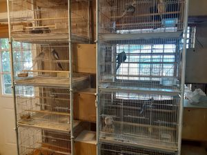 Bird cages for Sale in North Miami Beach, FL