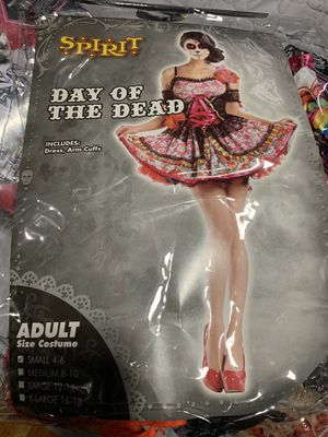 Halloween costume ladies small 4-6 for Sale in Roseville, MI