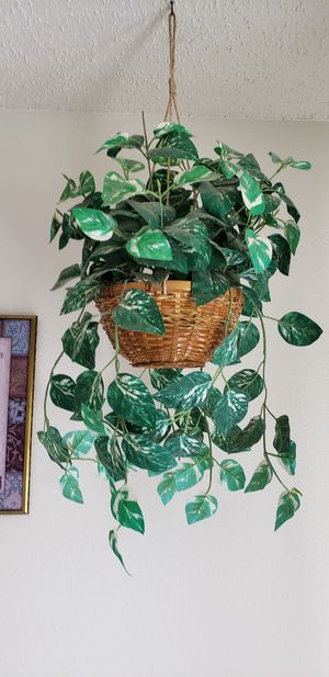 Hanging Fake plants for Sale in San Antonio, TX