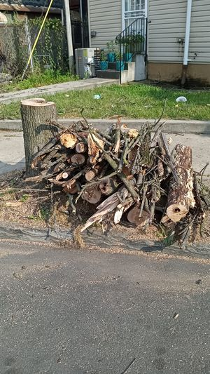 Free firewood ready to burn come & get it corner 18th and Glenwood for Sale in Philadelphia, PA