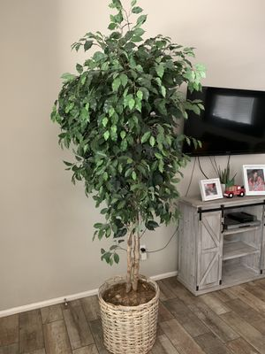 Fake tree indoor plant for Sale in Tolleson, AZ