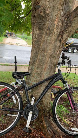 Schwinn mountain bike for Sale in Sparrows Point, MD
