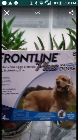 Frontline Plus for Sale in University Place, WA
