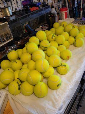 Tennis balls for Sale in Pembroke Pines, FL