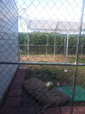 Stephen dog kennels. for Sale in Port Richey, FL