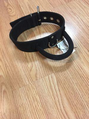 Dog collar harness for Sale in Murfreesboro, TN