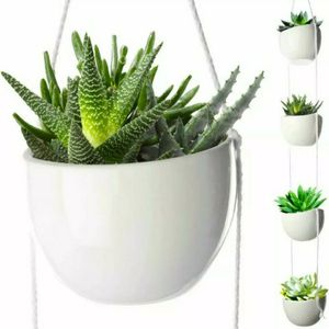 4 Tier Plant Hanging Holder White Ceramic Planters for Wall Ceiling Decorative Herb Garden for Sale in Miami, FL