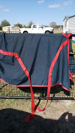 Horse sheet 78 for Sale in Belleview,  FL