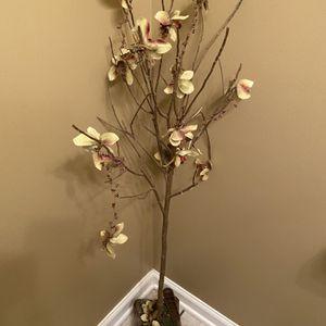 Decorative Tree for Sale in Franklin, TN