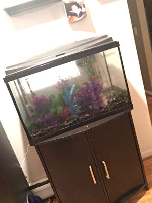 29 gallon fish take with everything in pictures for Sale in Mundelein, IL