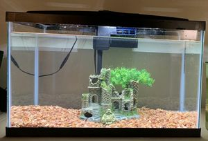 Fish Tank/ Aquarium (10 gallon) with Decor, Aerator, Heater, Fish Food and Accessories for Sale in Washington, DC