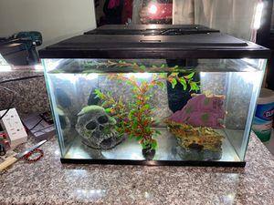 10 Gallon Fish Tank for Sale in Garden Grove, CA