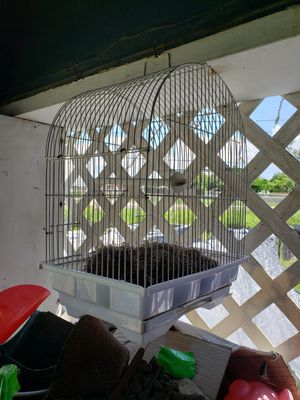 SMALL 🐦 BIRDCAGE GREAT CONDITION for Sale in Mercedes, TX