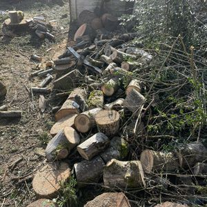 Free Fire Wood for Sale in Vancouver, WA