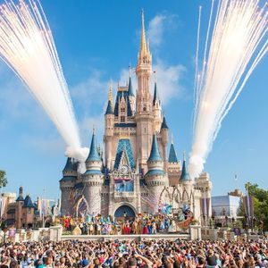 My roommate and I have work at the 2 parks and have comp passes for sale for Sale in Orlando, FL