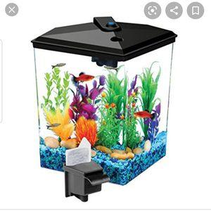 One Gallon Beta Fish Tank for Sale in Lugoff, SC