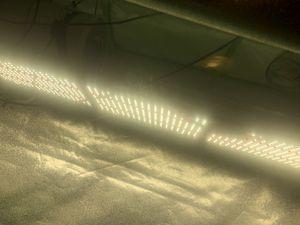 320w LED light Samsung lm301b for Sale in Clovis, CA