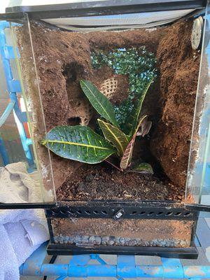 Reptile cage for Sale in Newport Beach, CA