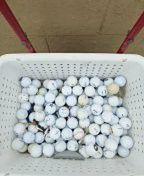 Golf Balls for Sale in Avon Park, FL