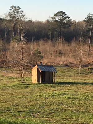 Dog House for Sale in Longview, TX
