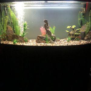 75 Gallon Fish Tank for Sale in Riverside, CA