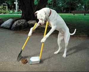 Pet Waste Removal for Sale in Hartford, SD