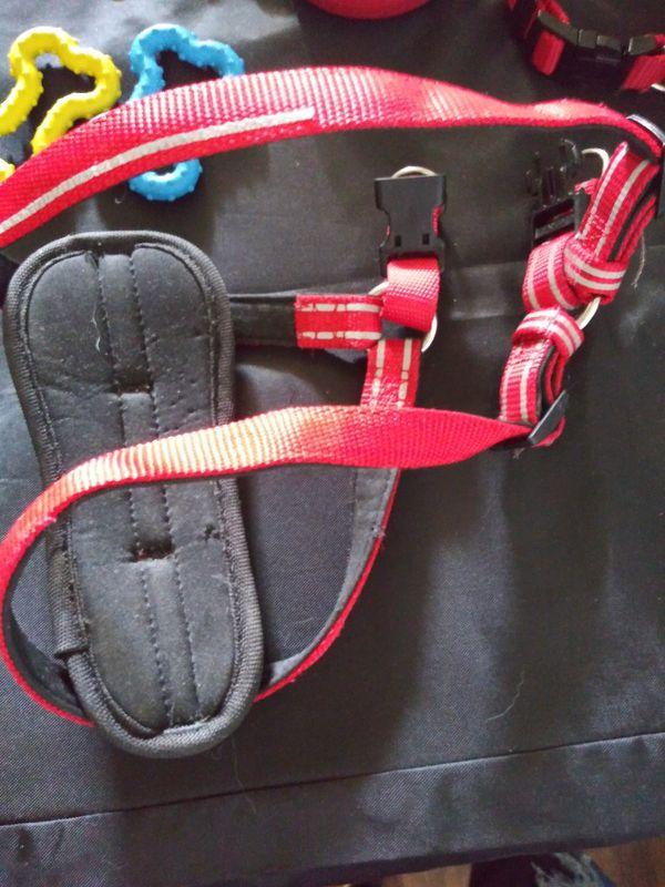 Dog Harness, Leash, & Collar