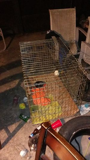 Dog cage for Sale in Loxahatchee, FL