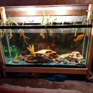 Fishtank for Sale in Elgin, IL