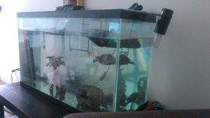 Tank 30 gallon only! for Sale in Chicago, IL