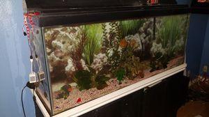 Fish tank for Sale in South El Monte, CA