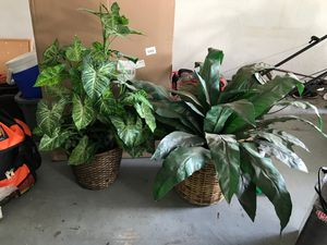 Fake Plants! for Sale in Houston, TX
