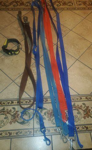 Dog Leashes for Sale in Tamarac, FL